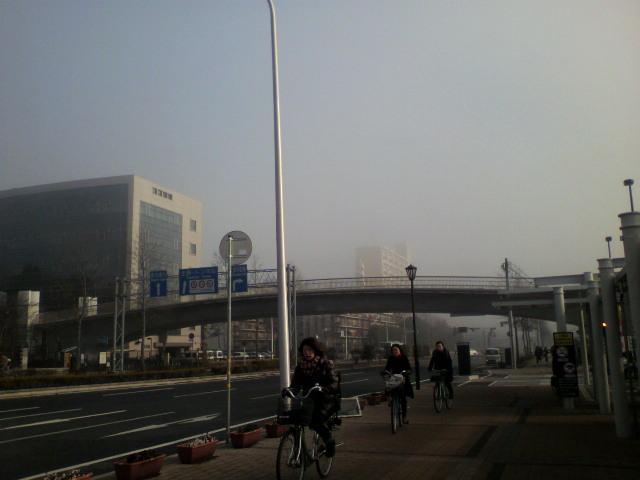 霧のつくば