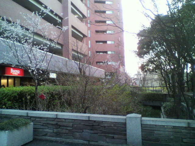 新宿、三鷹