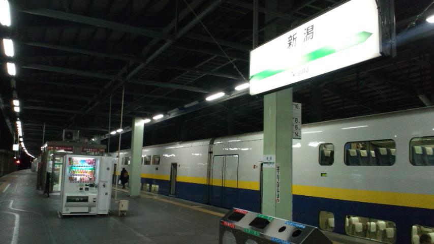 新潟野球検診2<br />  日目