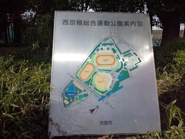 京都野球肘検診